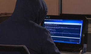 Более 500 казахстанских сайтов подверглись кибератакам