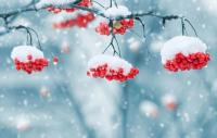 Прогноз погоды в Казахстане на 9 января