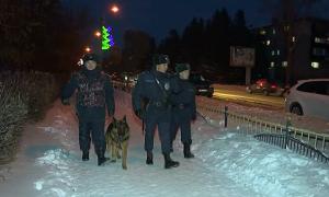 Служебная собака предотвратила трагедию в Уральске
