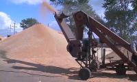 Полицейские СКО выявили 33 факта кражи сельхозпродукции с полей