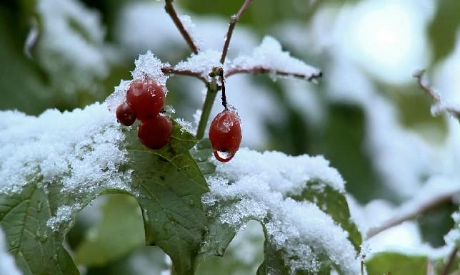 В Казахстане сохранится холодная погода с осадками