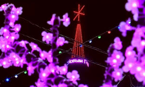 На новогоднее оформление в Петропавловске не выделят бюджетных средств