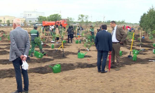 В ботаническом саду столицы высадили деревья из Польши