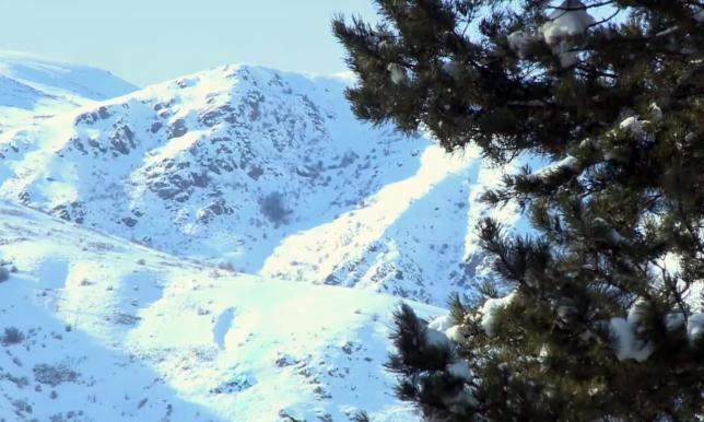 В Алматинской области спасатели предупреждают об угрозе схода снежных лавин