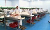 БҚО шаруашылықтары Иранға 180 тонна қой етін экспорттады