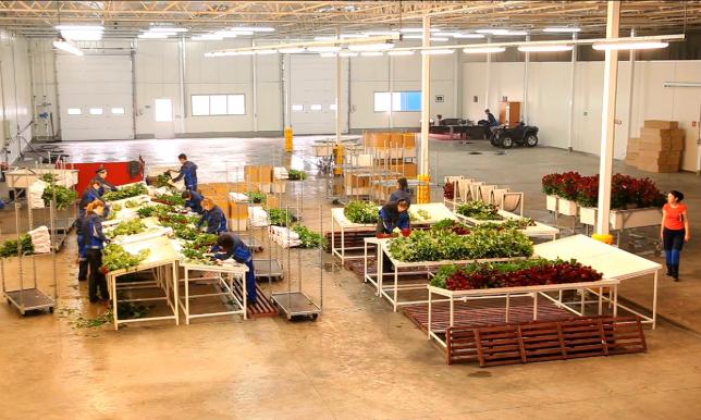 Три индустриальные зоны создают в Павлодарской области